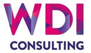 WDI Consulting